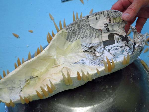 teeth in paper mache jaws