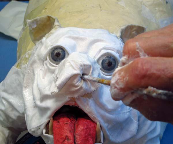 paper mache bulldog-cloth mache nose