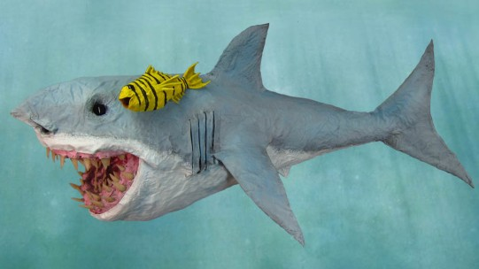 Paper Mache Shark-Dan Reeder