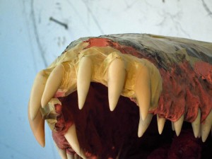 Paper Mache Tiamat Dragon - Blue fix front teeth