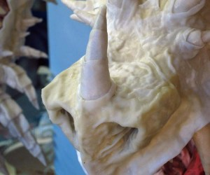 Paper mache tiamat dragon -nose