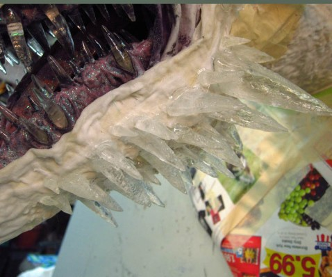 paper mache dragon -horns on jowls
